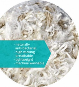 Merino Wool Closeup